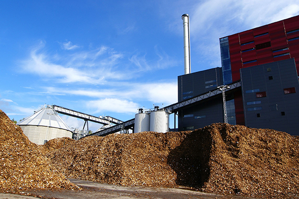 Biomass generation for homes would not fare well under proposals. Photograph: Andrei Merkulov/123RF