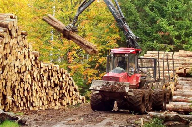 Active Energy sourcing biomass