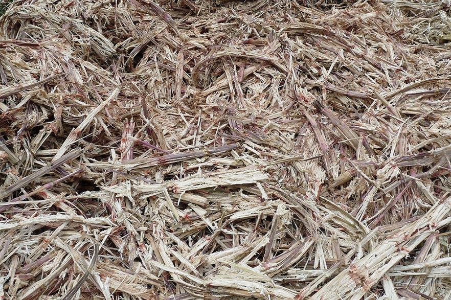 Bagasse, or sugarcane waste. Credit: CC-BY-SA 3.0 Ji-Elle