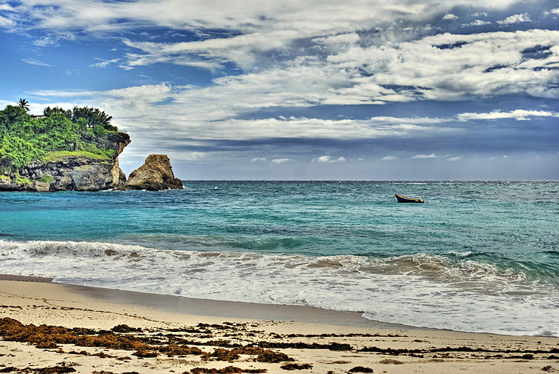 The coast of the island of Barbados