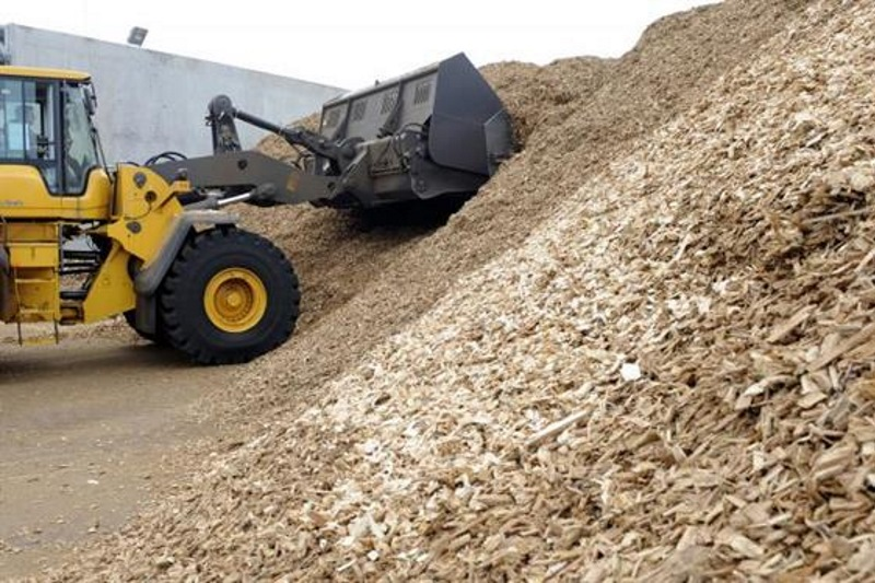 The scheme should boost demand for wood chips. Photograph: Getty Images