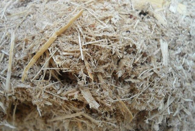 Bagasse is used in energy plants