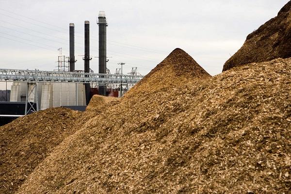 Biomass-to-energy
