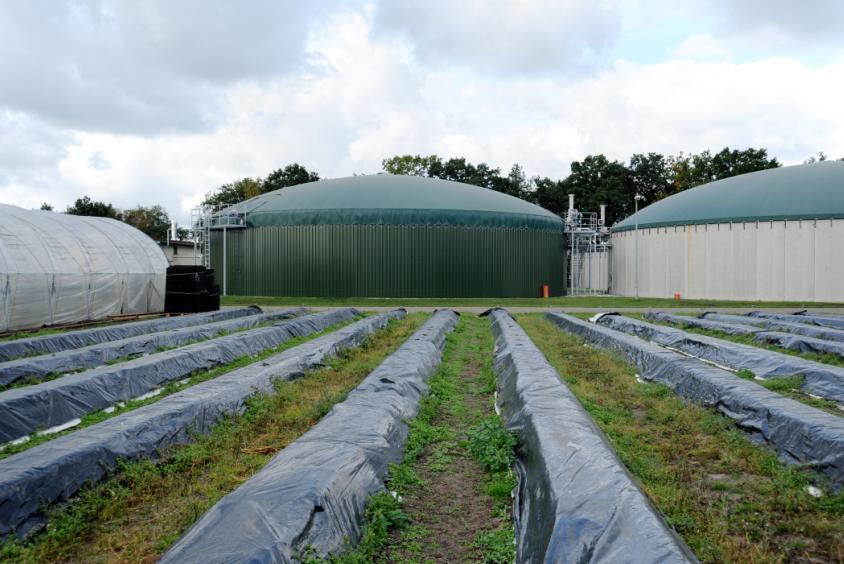 An EnviTec plant