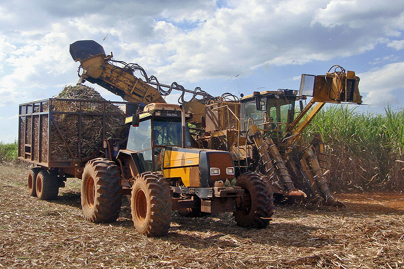Waste from sugar production can be used for biogas production