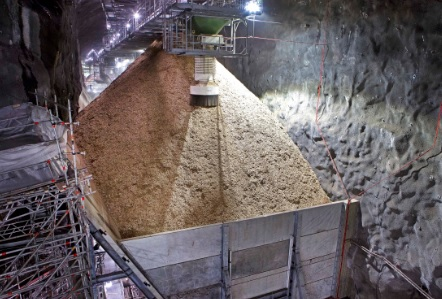 Feedstock for the company's biofuel-fired CHP in Värtan