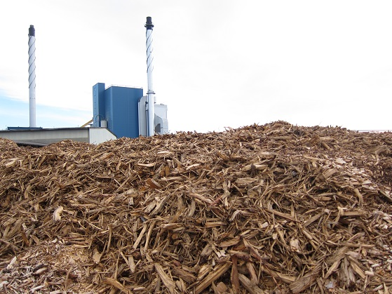 A wood-fired plant