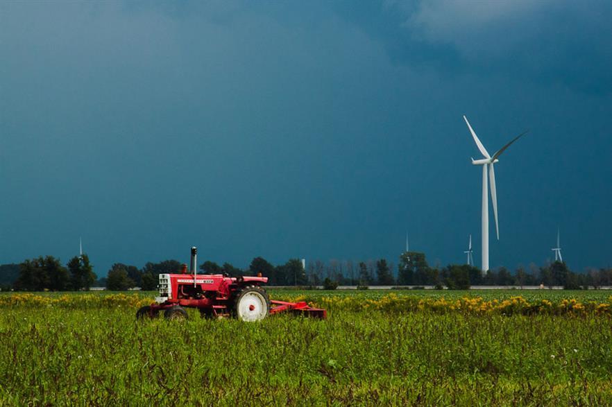 Comber wind farm in Ontario (photo:Sharon Drummond)