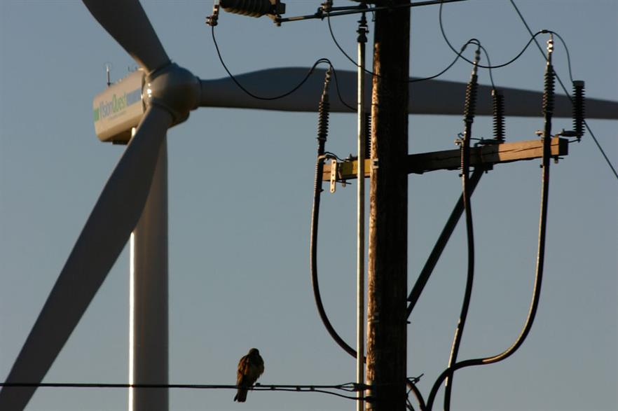 Balancing act: Canada's grid has not kept up with growth of its wind market (Photo:David Dodge, Green Energy Futures)