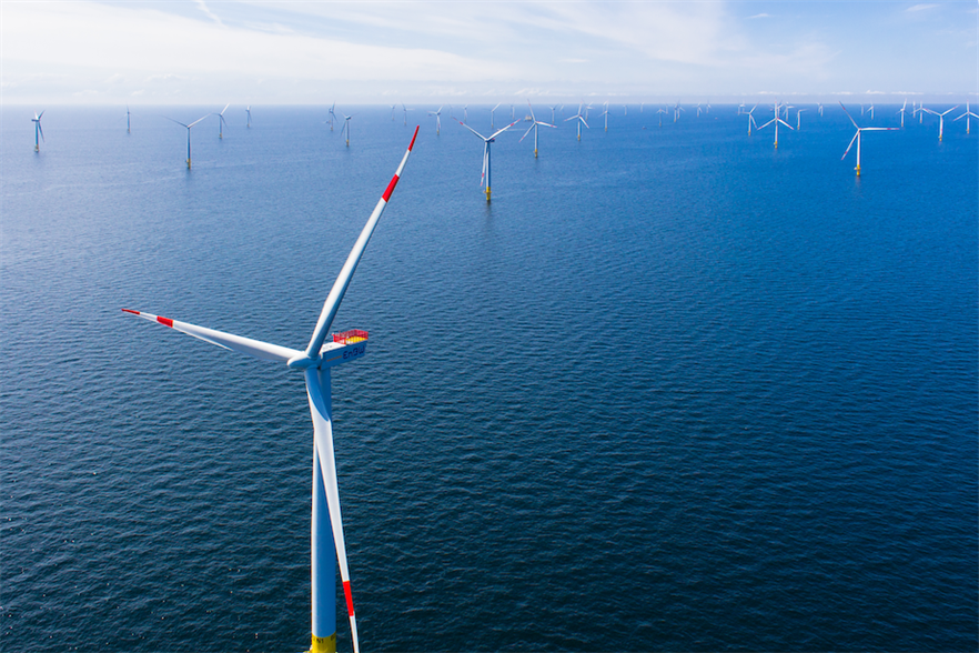 EnBW's Baltic 2 (above) helped 50Hertz and Energinet black start the coal power plant in their simulation