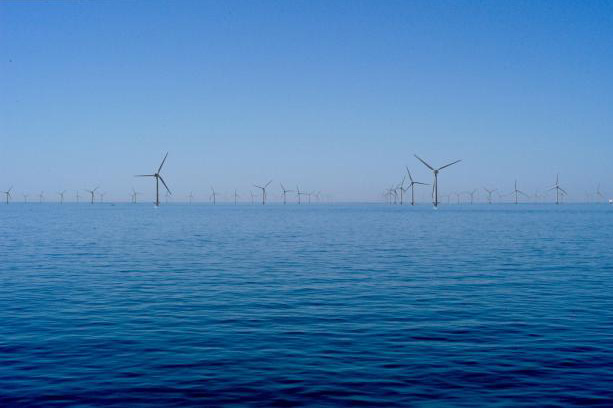 A simulation of the Cape Wind project, located in the Nantucket Sound, northeast US