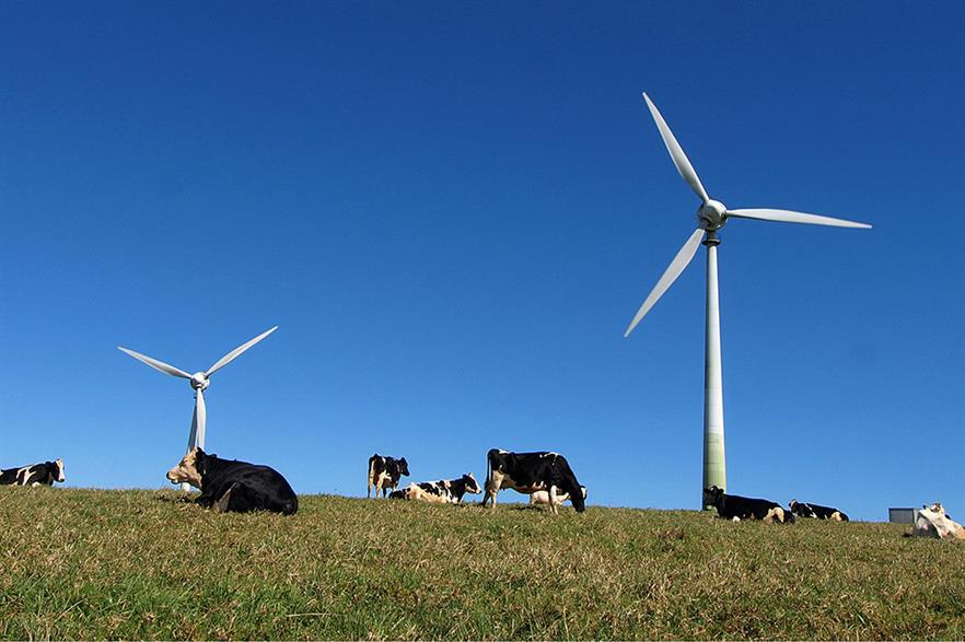 Turbines blamed for fall in milk production (pic: certified su)