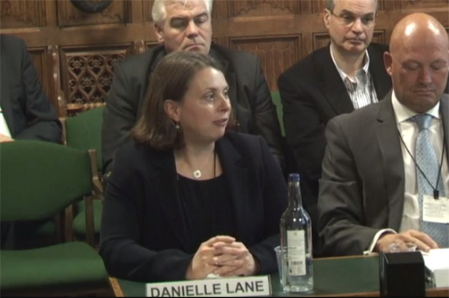 Dong's Danielle Lane giving evidence to the UK parliament's energy and climate change select committee