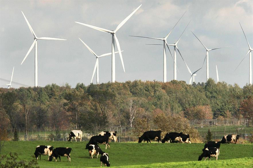 The Maple Ridge project in New York - New York could see substantial evening price reductions in a high wind scenario