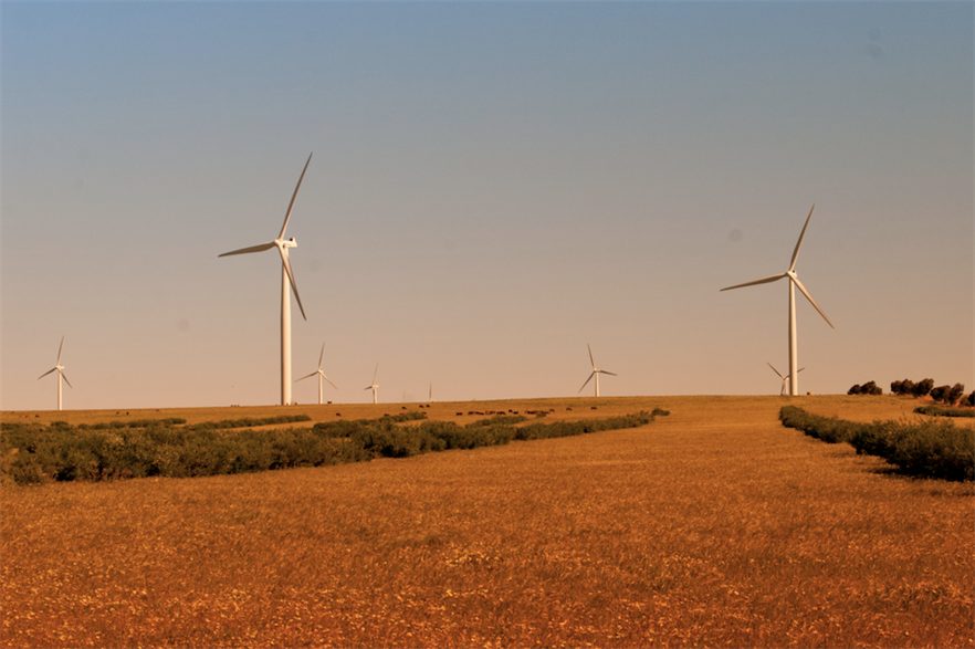 Western Australia is home to 800MW of operational wind power capacity, including the 80MW Emu Downs project (pic credit: Wikimedia Commons/Gnangarra)