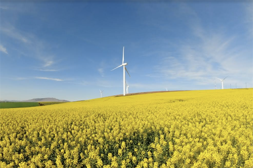 Between 2022 and 2030, the South African government envisages 14.4GW of new wind farms being installed (pic credit: SAWEA/Stephen Minne)