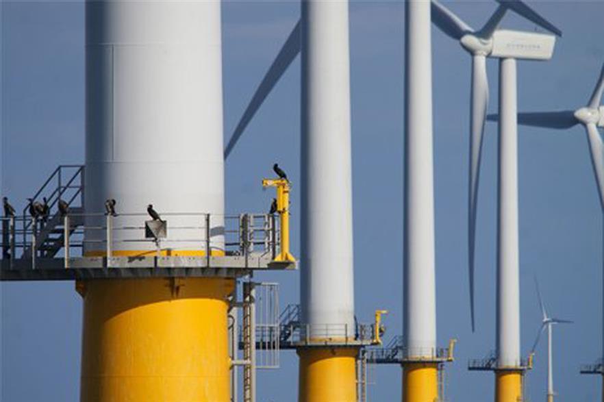 The Egmond aan Zee offshore wind farm is already operating in Dutch waters