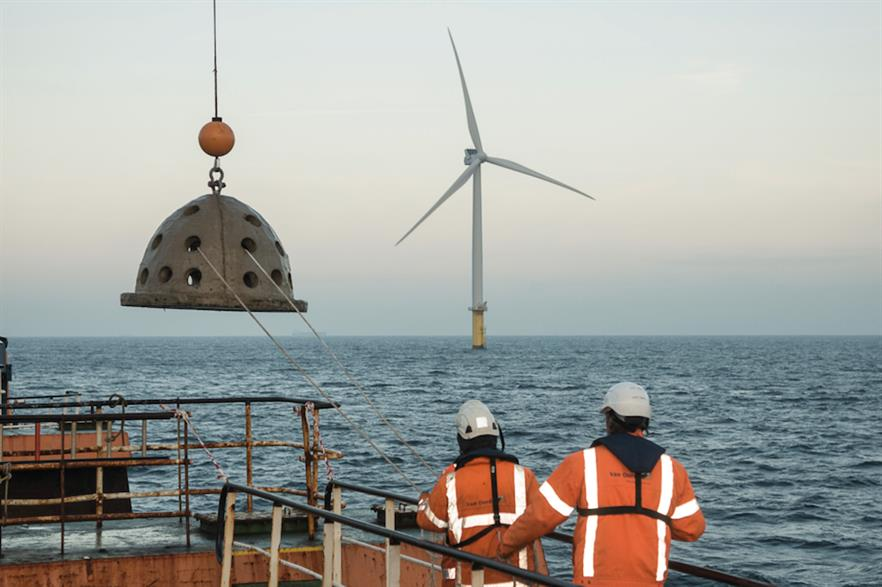An oyster cage ready to be lowered into the water near one of Luchterduinen's 43 turbines (pic credit: Van Oord)