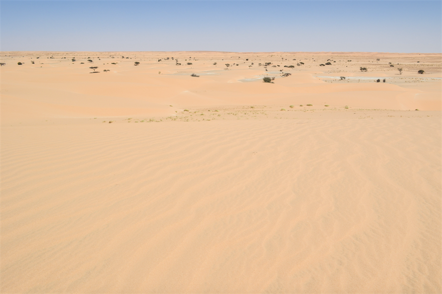The $40 million Aman project would be located in the north of the country on an approximately 8,500km2 site in the Sahara (pic credit: Jbdodane/Flickr)