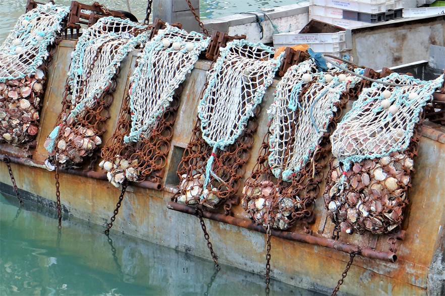 Construction has been timed to avoid interfering with the local scallop fishing season, which finishes at the end of April (pic credit: Ibex73/Wikimedia Commons)