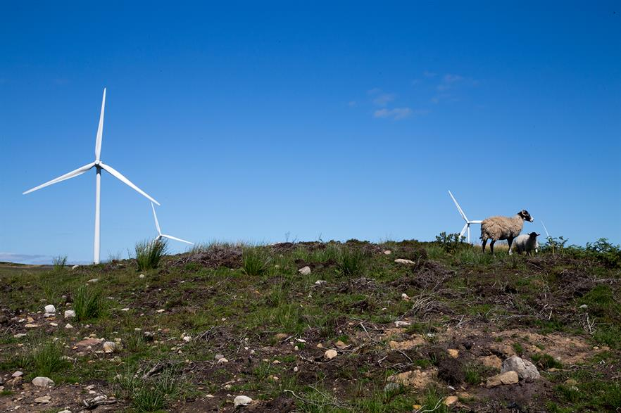 Vattenfall's wind unit benefitted from higher electricity prices, despite lower wind speeds in H1
