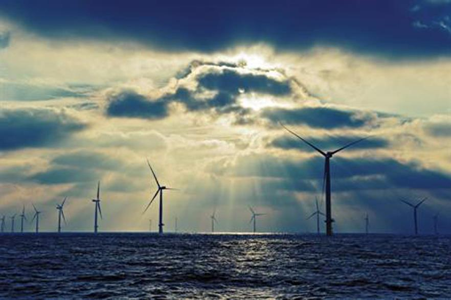 Wind Minds will provide consultancy services to projects in Europe, Asia, and America
