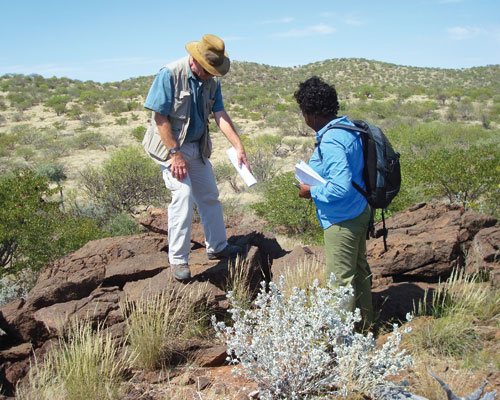 Researchers from CSM and Nambia Rare Earths discuss a carbonatite dyke at Lofdal, Namibia (credit: Frances Wall)