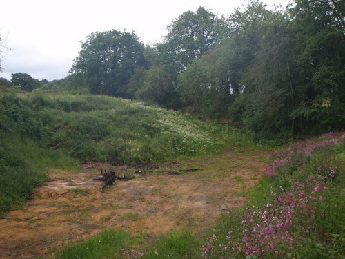 Land off Mile Flat (Image Credit Staffordshire CC)