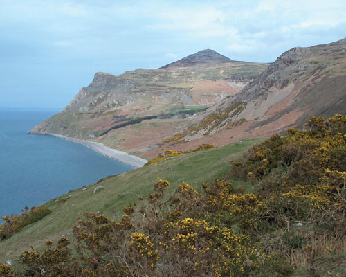 The granite quarries of Nant Gwtheyrn Valley on the Llyn Peninsula had almost a 2,000-strong workforce. Credit: Ian Thomas