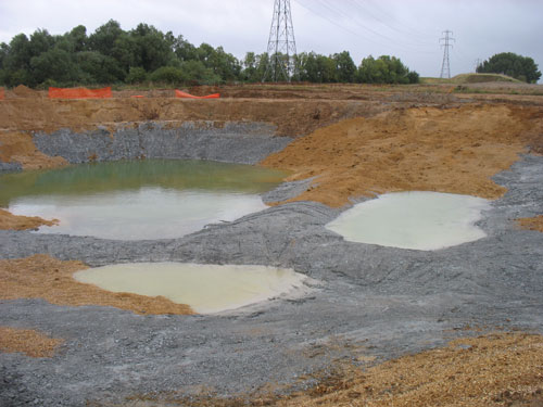 Million Ponds: creating sustainable habitats (Image credit: Jim Fairclough)