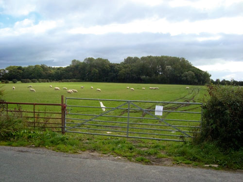 Crook Gate Lane: unnatural shape of the lake would result in a visually obtrusive development (Lancashire County Council)