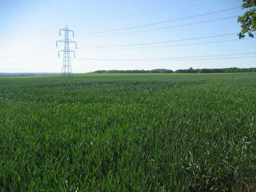 Ledsham: new landform following green belt coal extraction would be imposing and unnatural (Image credit: Leeds City Council)