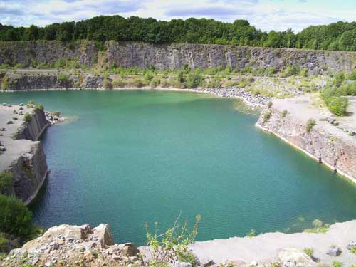 Cookswood Quarry: site untouched since 1989 (Image credit: DMH Stallard)