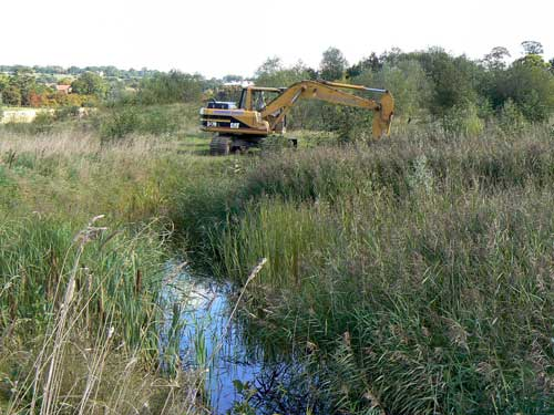 Otley: restored quarry is home to a variety of protected and UK Biodiversity Action Plan priority species (Image credit: Hanson UK)
