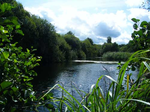 Idle Valley Nature Reserve (Image credit: Di Fisher)