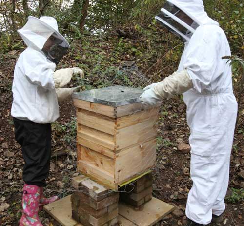 CEMEX is hostins six hives at its Taffs Well quarry near Cardiff