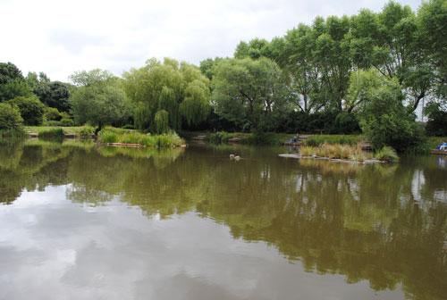 Freshwater habitats: a prime restoration option