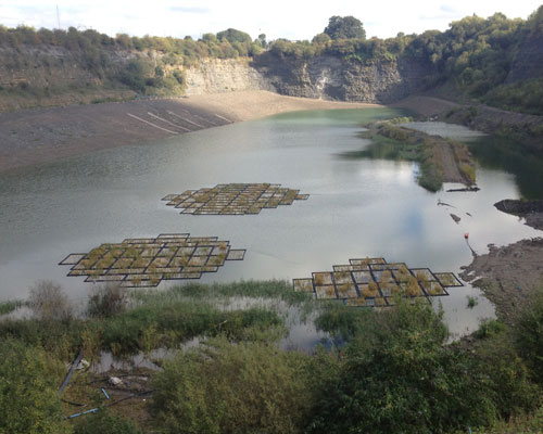 A new nature reserve is being created at a former CEMEX quarry and landfill site in Rugby, Warwickshire. Credit: CEMEX