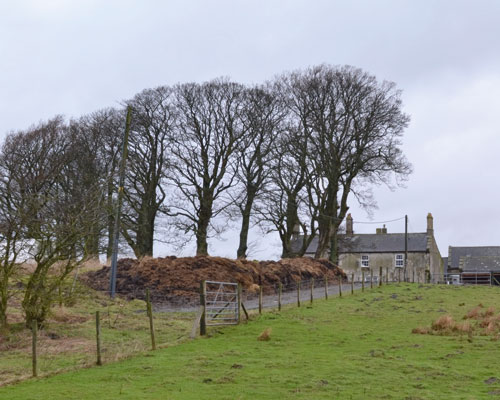 This farmhouse in the middle of the 30 hectare Halton Lea Gate site will be retained during development and it will eventually form the centre of the equestrian facility after restoration. Credit: Wardell Armstrong
