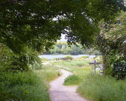 Hanson UK won a 2013 Biodiverstiy Award for restoration of its Upper Nene Valley gravel pits. Credit: MPA