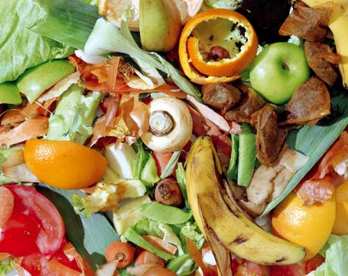 Food waste: potential for significant savings (Image credit: Waste Watch)