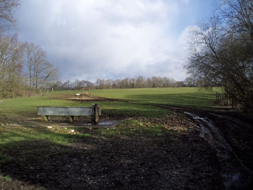Cranley: leachate management system allowed (Image credit: Surrey County Council)