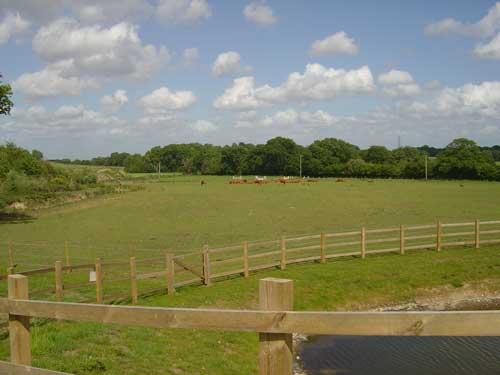 Trumps Farm (Image Credit; Surrey CC)