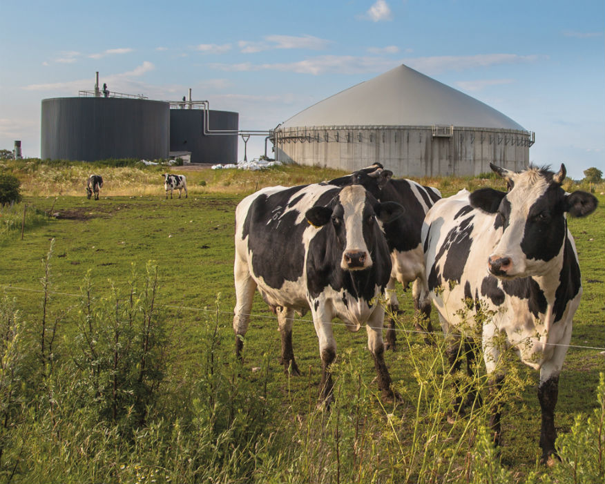 The global anaerobic digestion (AD) industry is set to reach $1trn. Picture: ADBA