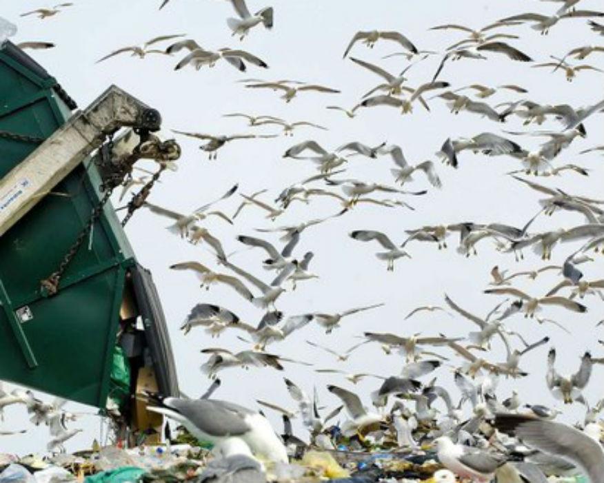Hazardous waste forms a 100-million-tonnes mountain. Picture: Stipe Surac: Waste smART/EEA