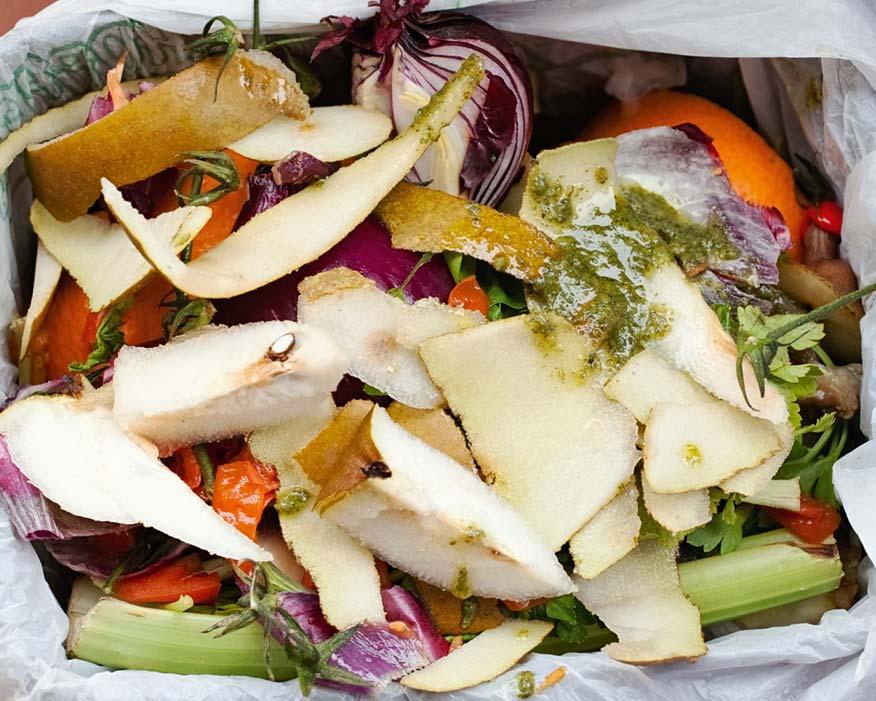 Food waste: network seeks to reduce bills (credit: Antonio Gravante/123RF)