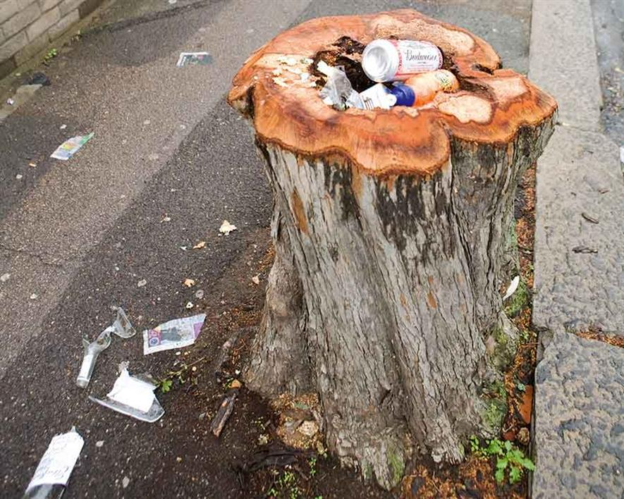The litter problem requires a national action plan (credit: CPRE)