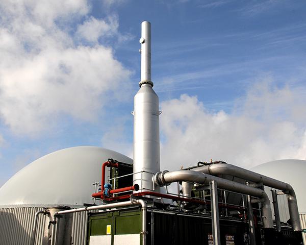 Anaerobic-digestion facility in Basingstoke. Photograph: Tamar Energy