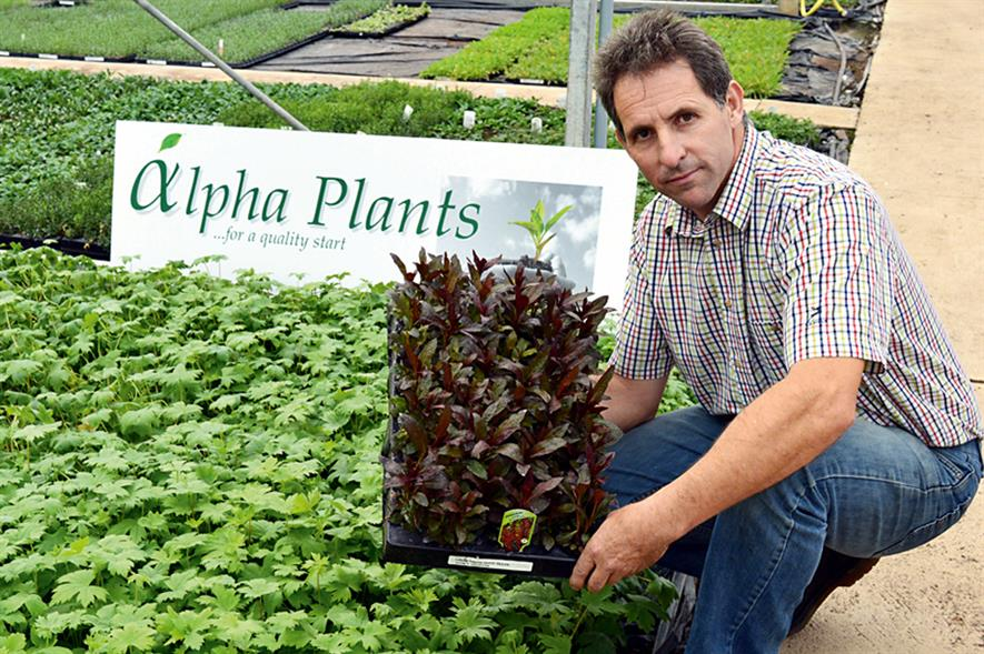 Alpha Plants owner Mike Roberts (HW)