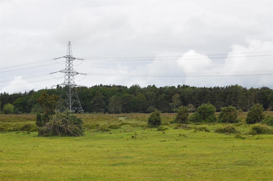 New Forest National Park: one of the sites on National Grid shortlist - image: National Grid